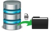 sql server backup icon