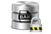 backup encryption in sql server